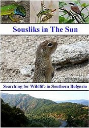 Bulgarian Wildlife DVD filmed in Southern Bulgaria