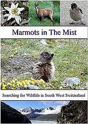 A DVD Film showing the Wildlife of South West Switzerland
