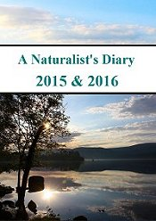 A Naturalists Diary Wildlife Film
